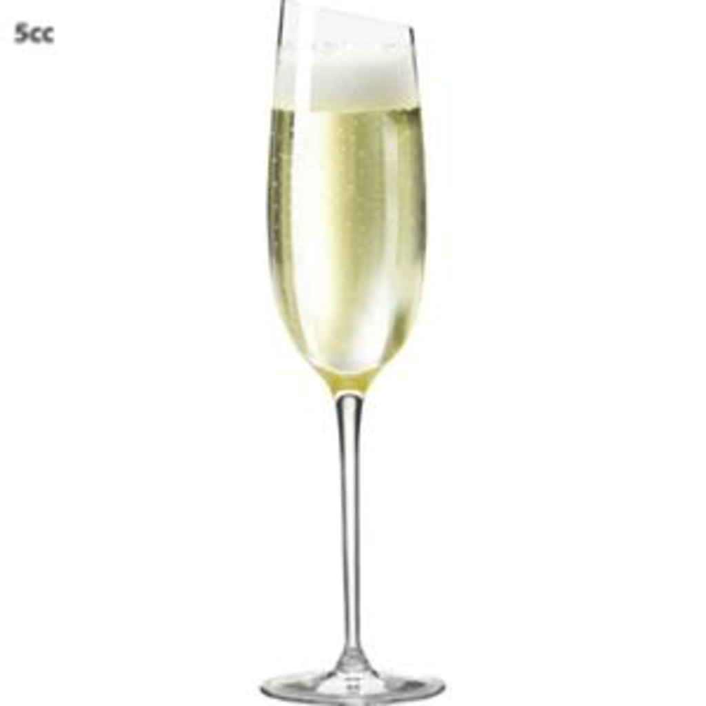 tuingerei eva solo champagneglas champagne 20 cl van eva solo wijn bar. Black Bedroom Furniture Sets. Home Design Ideas